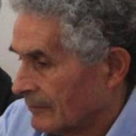 José Emílio Amaral Gomes